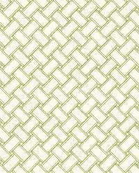 Basket 23 Green Wallpaper WT4597 by