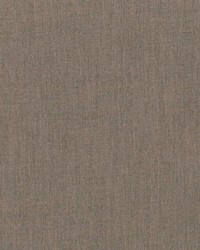 Sunbrella Cast Shale Fabric