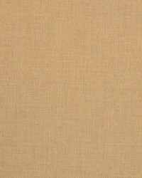 Sunbrella Spectrum Almond Fabric