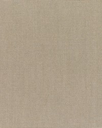 Sunbrella Canvas Taupe Fabric