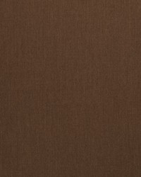 Sunbrella Canvas Chestnut Fabric