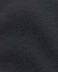 Sunbrella Canvas Raven Black Fabric
