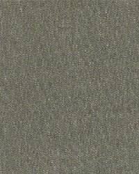 Sunbrella Cast  Sage Fabric
