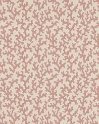 Folly Pink by  Schumacher Wallpaper