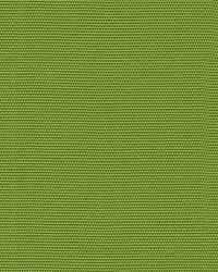 Function 16235 323 Lime by