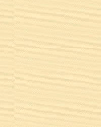 29741 111 Creme by