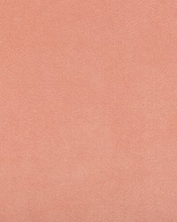 Ultrasuede Green 30787 1717 Powder by