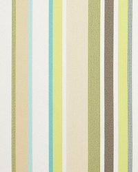 Corsis Stripe 34503 316 Celery by