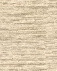 Alpine Texture Pumice by