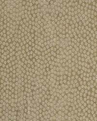 Lustrous Light 34830 16 Linen by