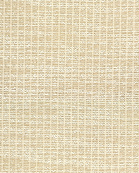 Bejo Sheer 3668 1 Ivory by