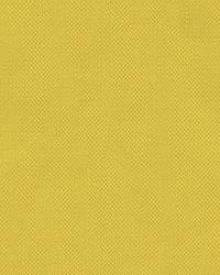 Mandarina 3868 40 Oro by