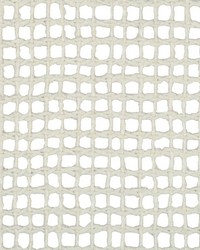 Lachman 4499 1 Oyster by