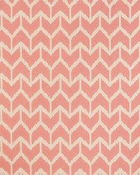 Togo AM100312 17 Pink by