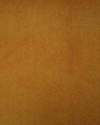 Villandry AM100325 4 Mustard by