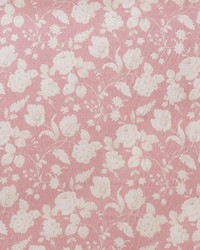 Narikala AM100336 7 Pink by