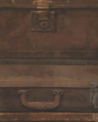Luggage Leather by