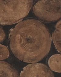 Lumberjack Timber by