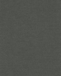 Blazer Charcoal by  Kravet Wallcovering