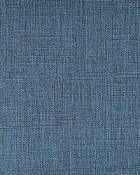 Caslin 55 Bluebird by