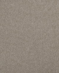 Highlander F0848/52 CAC Latte by