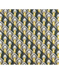 Ocean Drive GDT5137 001 Gris/amarillo by