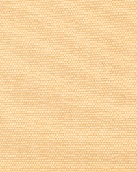 Panama GDT5234 029 Beige by