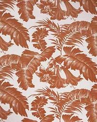 Plantation GDT5401 1 Naranja  by