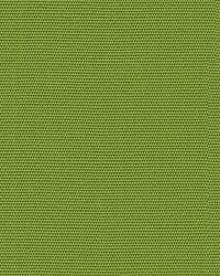 Canvas Ginkgo GR-54011-0000 0  by
