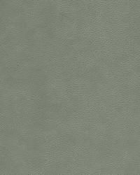 KRAVET DESIGN L-CIMARRON ELEPHANT by