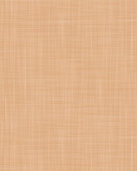 MAHON LCW1040 003 CALABAZA by  Kravet Wallcovering
