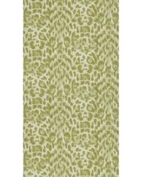 Felis W0115/05 CAC Green  by