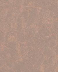 W3025 6 by  Kravet Wallcovering