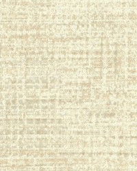 W3341 W3341.16 by  Kravet Wallcovering