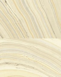 W3356 W3356.16 by  Kravet Wallcovering