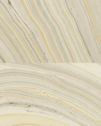 W3356 W3356.1611 by  Kravet Wallcovering