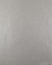W3376 W3376.11 by  Kravet Wallcovering