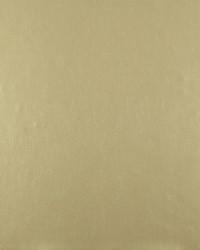 W3376 W3376.1116 by  Kravet Wallcovering