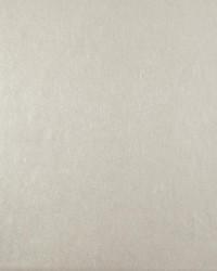 W3376 W3376.116 by  Kravet Wallcovering