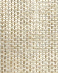 PAPERWEAVE WBG5112 WT by