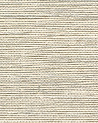 SIMPLY SISAL WNR1120 WT by  Winfield Thybony Design