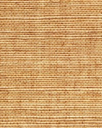 SIMPLY SISAL WNR1133 WT by  Winfield Thybony Design