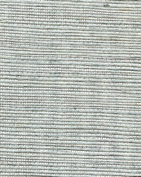 COLLEGIATE STRIPE WNR1143 WT by  Winfield Thybony Design