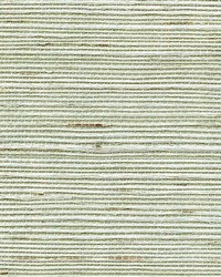 SIMPLY SISAL WNR1198 WT by  Winfield Thybony Design