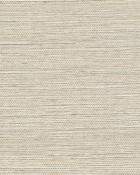 Metallic Sisal WSS4503 WT Parchment by