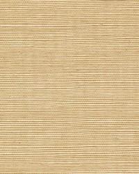 Sisal WSS4509 WT Wheat by