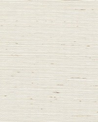 Sisal WSS4518 WT Cotton by