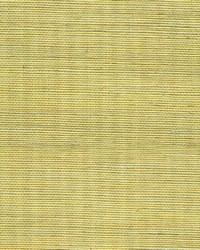 Metallic Sisal WSS4528 WT Lemon Grass by
