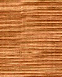 Sisal WSS4543 WT Marigold by