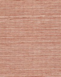 Sisal WSS4555 WT Driftwood by